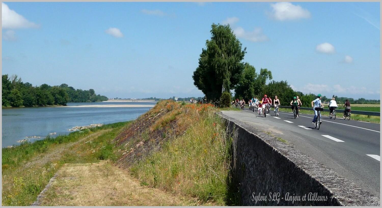L'Anjou et le vélo