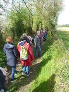 La randonnée du 7 avril à Roucamps