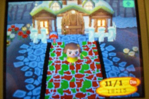 Ma maison ( le truc rouge est la route de ma ville )