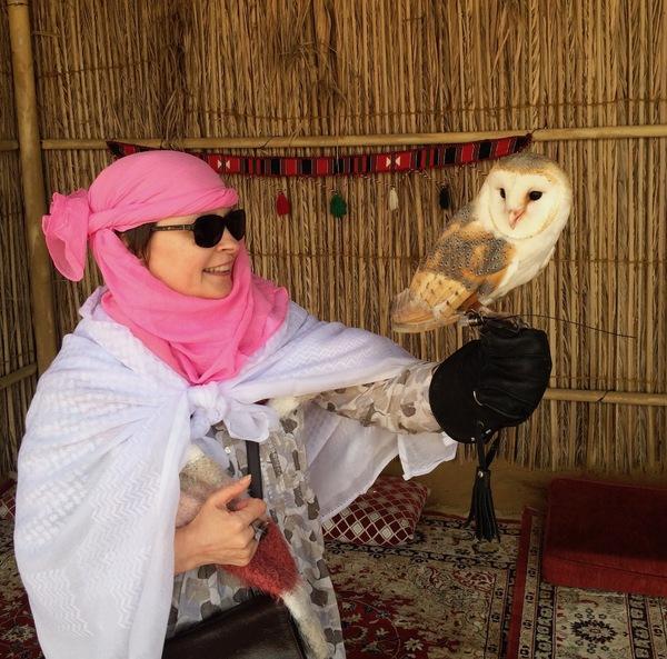 Désert de Dubaï en safari