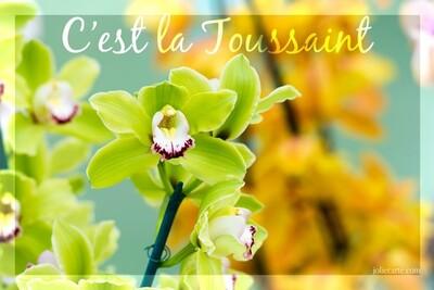 Images de la Toussaint