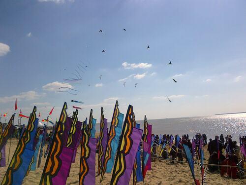 Festival du cerf volant a Chatellaillon- 17