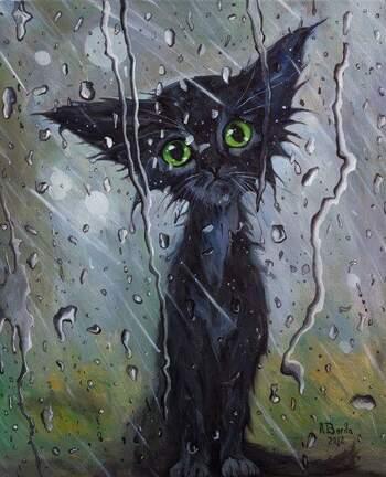 Les larmes selon Chat Trap