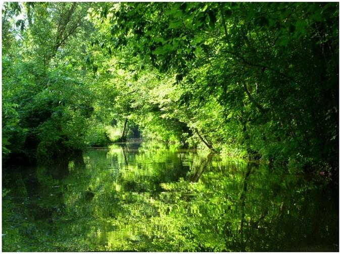 Sur les canaux  en Venise Verte