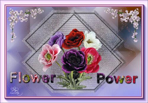 Les 184 Flower Power