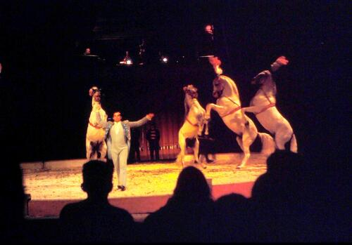 vues du spectacle Jean Richard en 1971 à Mende ( archives Jean Claude Murat)