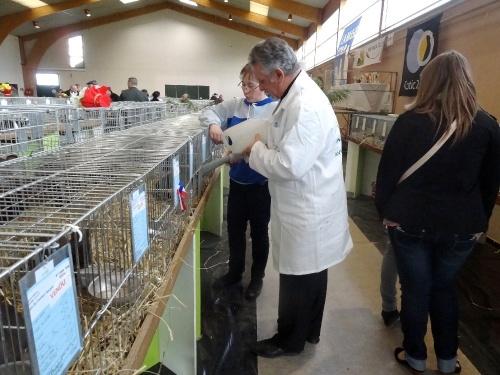 Le salon avicole 2012 à Châtillon sur Seine...