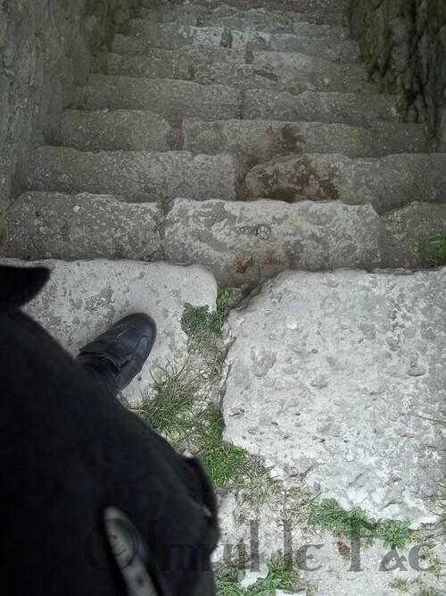 Un escalier descend dans les profondeurs obscures...