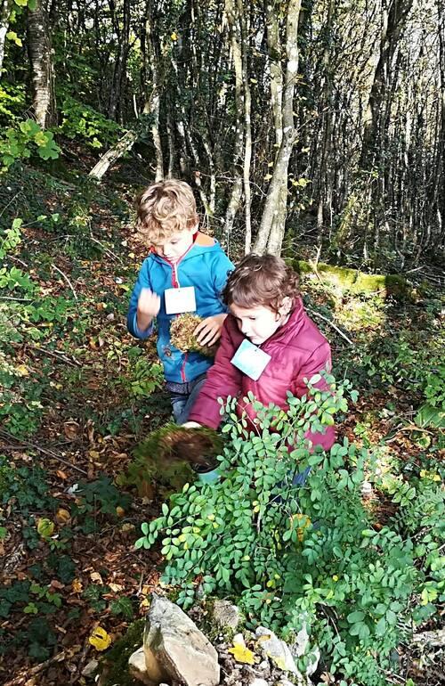 Sortie nature PS/GS