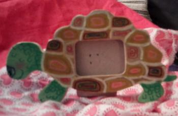 cadre tortue