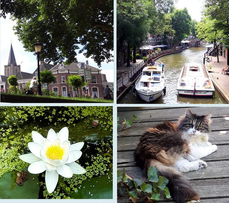 Utrecht (NL)