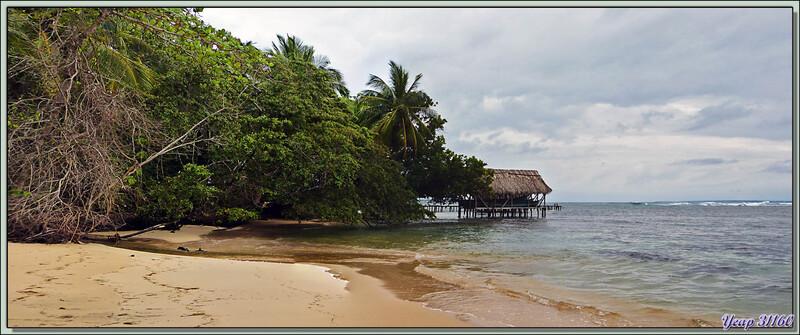 Plage - Isla Bastimentos - Bocas Del Toro - Panama