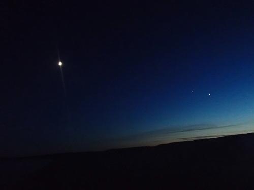 la nuit, c'est chouette aussi !
