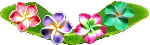 Fleurs de Tiaré