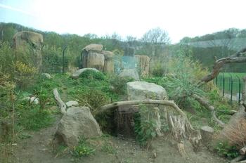 Zoo Osnabruck d50 2012 082