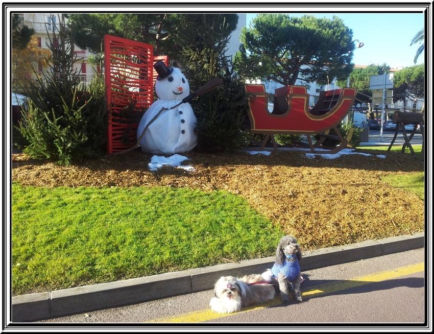 Royan le 7 décembre 2013 ,quelques décorations de fêtes
