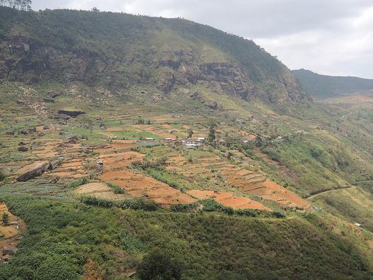 Le taux de suicide élevé chez les agriculteurs indiens persiste