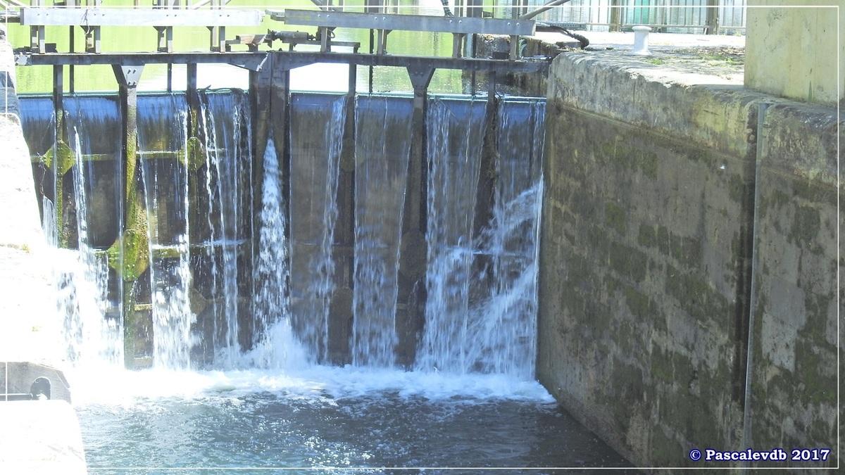 Printemps le long du canal latéral à la Garonne - Avril 2017 - 5/10