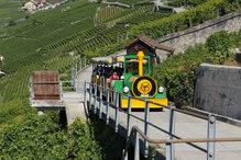 Balade dans le Lavaux - Epesse (Suisse)