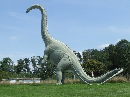 Découverte d'un dinosaure géant