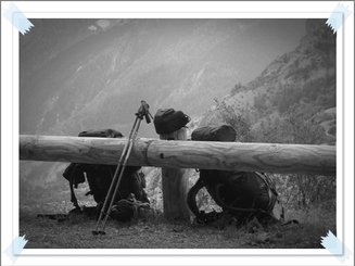 Voyage à travers l'Alpe : de l'Ubaye au Queyras, en passant par la Clarée