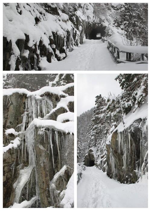 Au bord du chemin... décors hivernaux