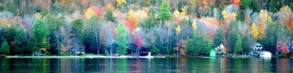 V.5 : On dirait que l'automne est arrivé
