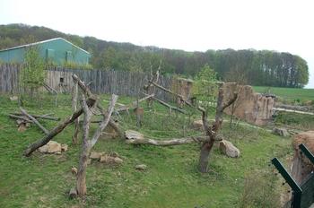 Zoo Osnabruck d50 2012 072