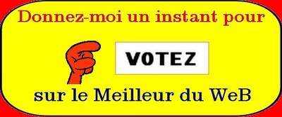 votez sur meilleur du web