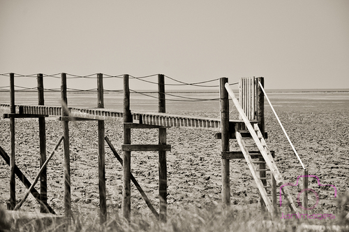 Paysage en Noir et blanc ...