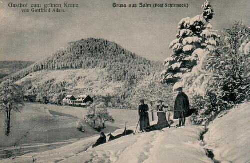 carte postale ancienne Salm