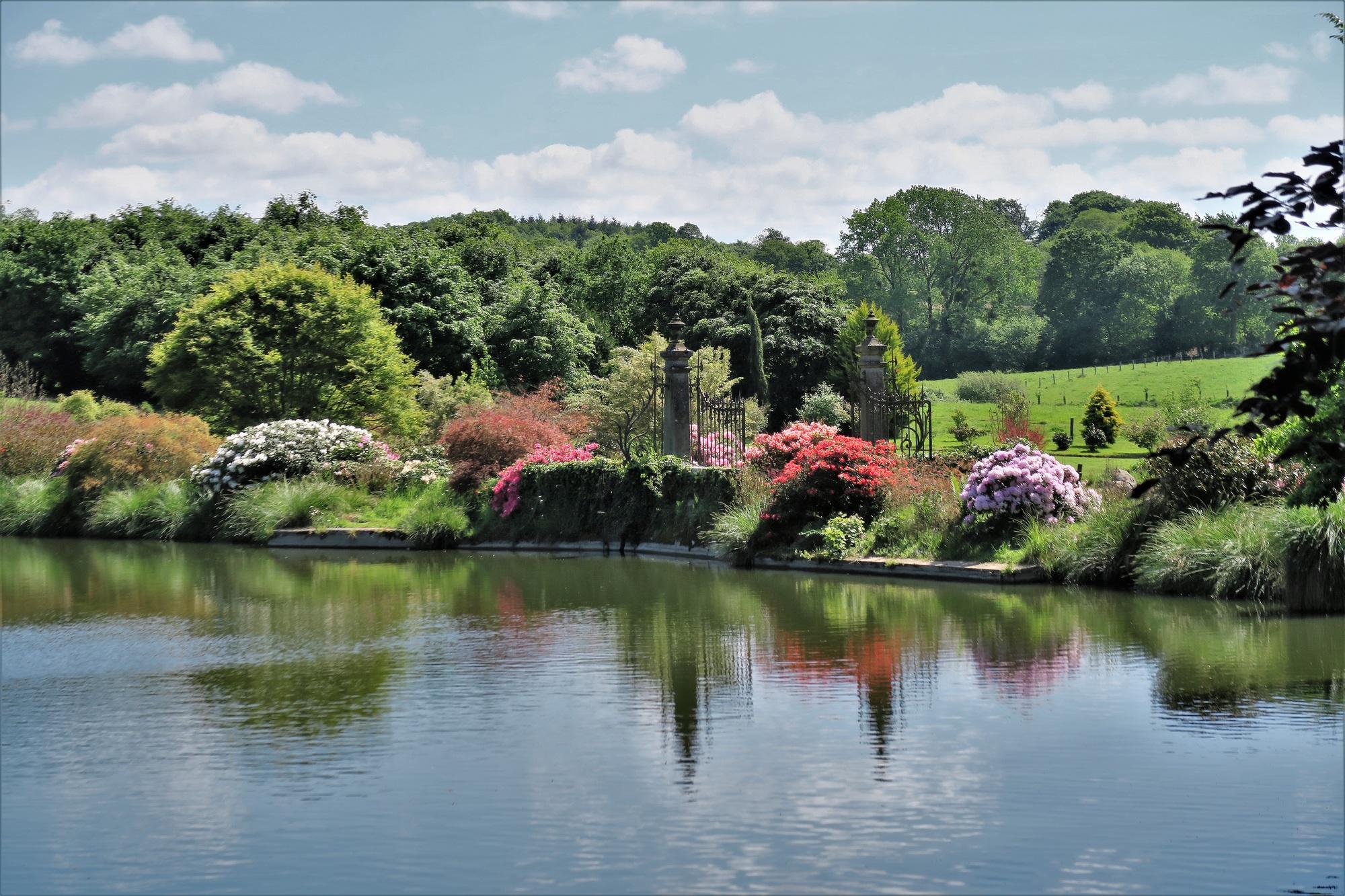 Parc Botanique de Haute-Bretagne : Jardin de la Source Bleue