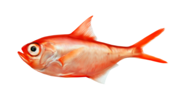 """Tubes spécial mer """"les poissons"""""""