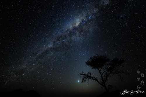 Milky Way over Namtib