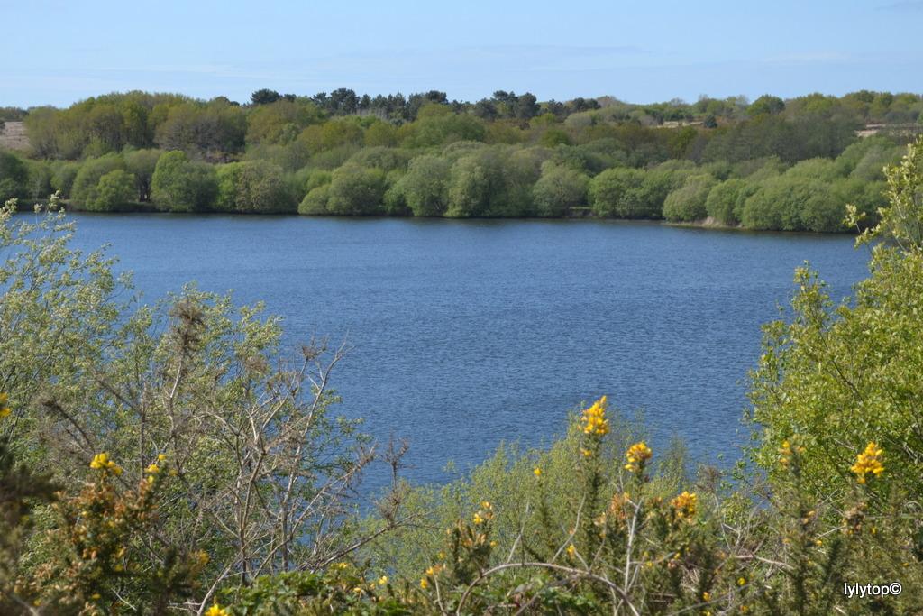 Le lac de Bruyère à Millières (7 et fin)