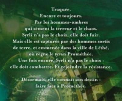 Chronique du roman {Syrli - T2}