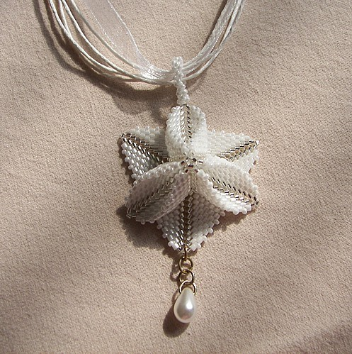 Trillium-blanc-4.JPG
