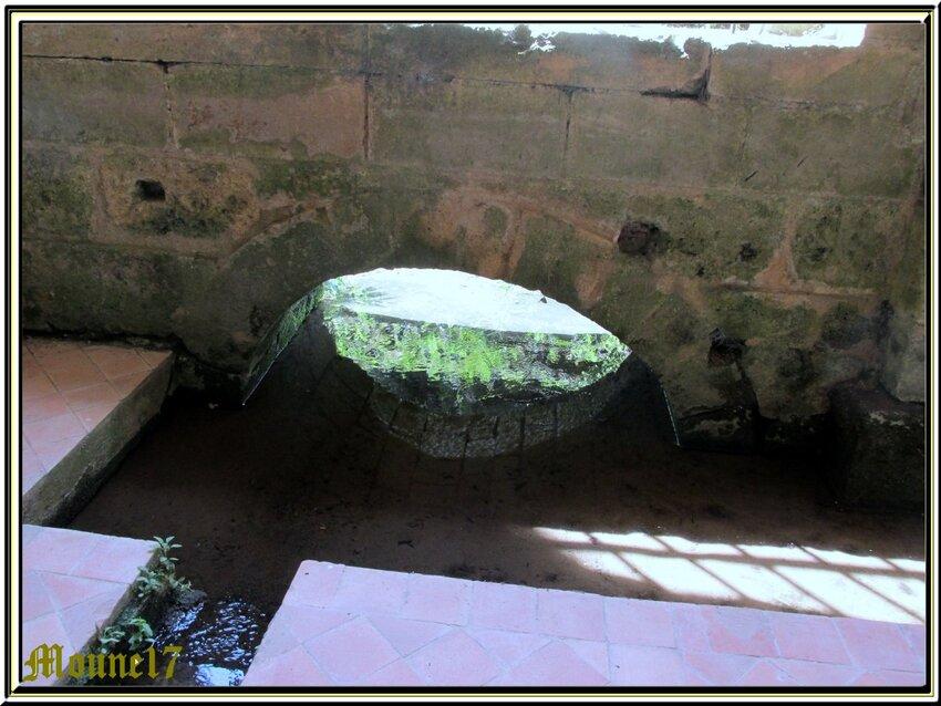 L'Abbaye de Fontdouce à St Bris des Bois (17)