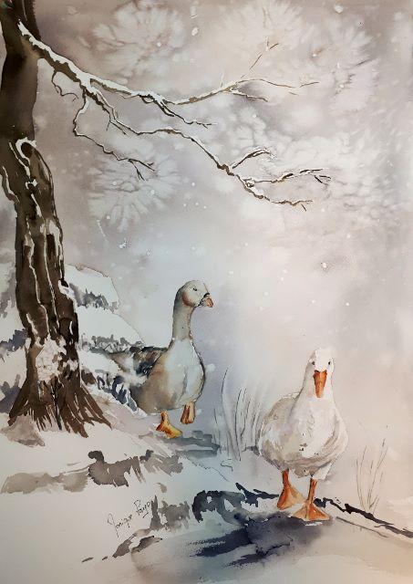 L'image contient peut-être: oiseau et plein air