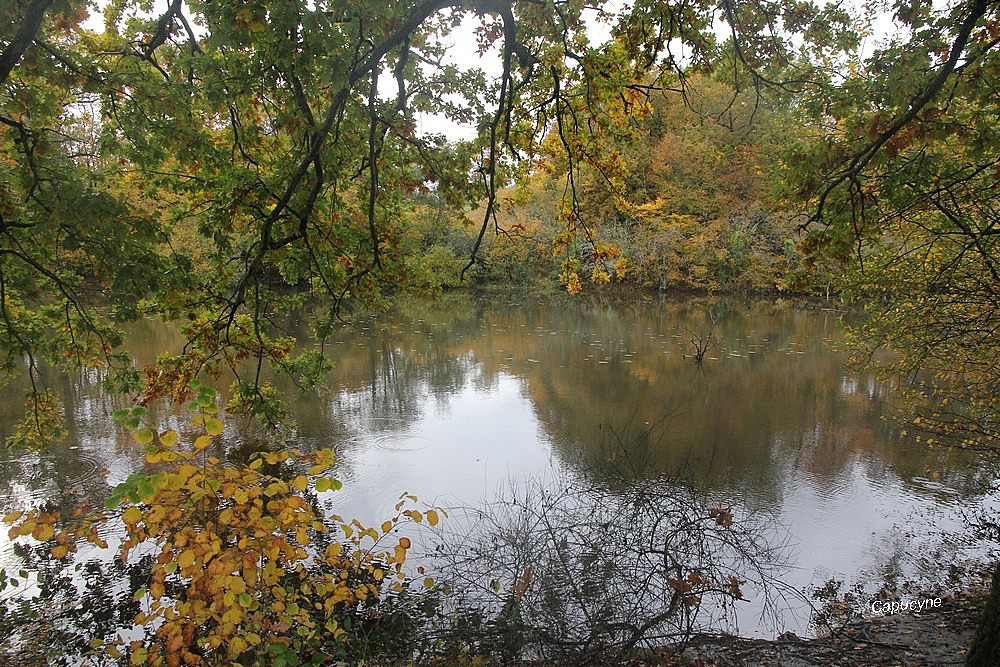 Ballade d'automne