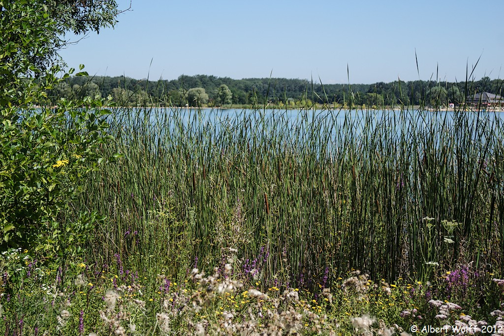 Chour : lac et nature, etc... (Part 2)