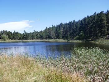 Le lac de Calvet