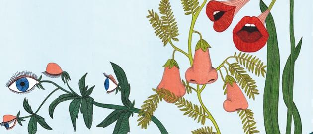 L'intelligence secrète des plantes
