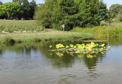 Château et parc du Grand Blottereau à Nantes