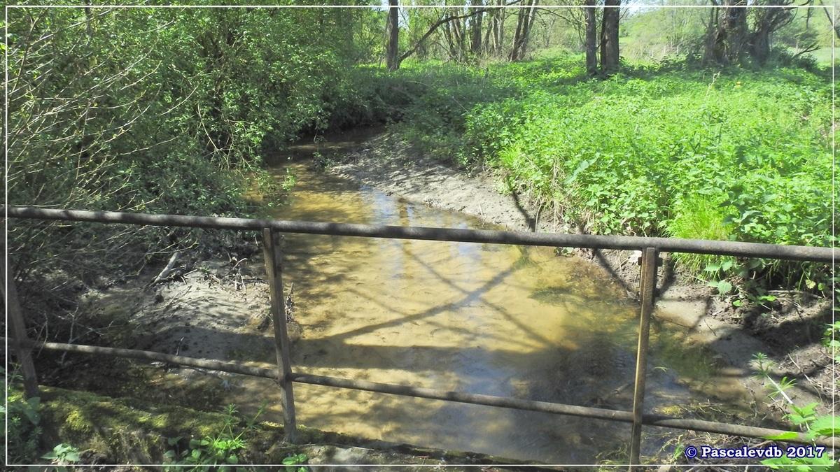 Le lac de La Prade - Avril 2017 - 5/12