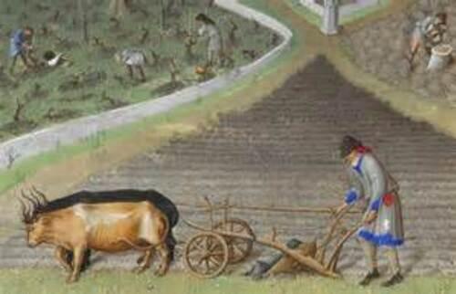 Moyen Age : 90 % paysans.