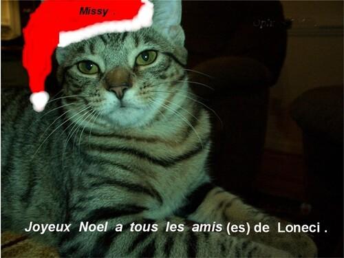 Message  pour  Noel .