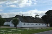 De Copenhague à Ribe-elevage de chevaux