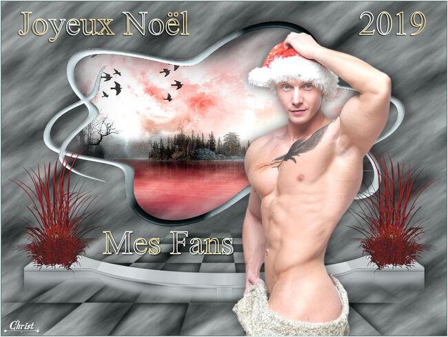 Joyeux Noël les amies (is).