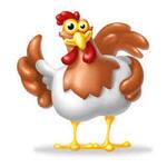 Livraison de poulets